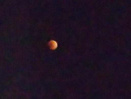 月を眺める